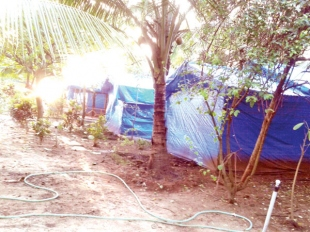 Temporary shacks in Canacona 'reopen without licence'