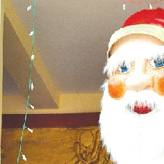 A life-size replica of Santa Claus put up by the Mapusa merchants for Christmas at Mapusa.