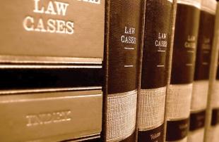 GOVT VS GOVT SERVENT : STATE ASSEMBLES TO CRACKDOWN  ON SERIAL LITIGATOR