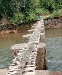 Bhutpal villagers risk their lives  to cross Talpona 'bridge'
