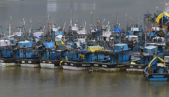 Fishing season starts, no trawlers venture out
