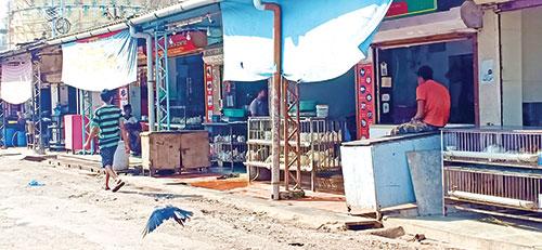 Vasco chicken vendors feel the heat