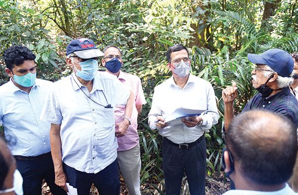 Avoid felling trees, take diversion, CEC tells PWD, NHAI