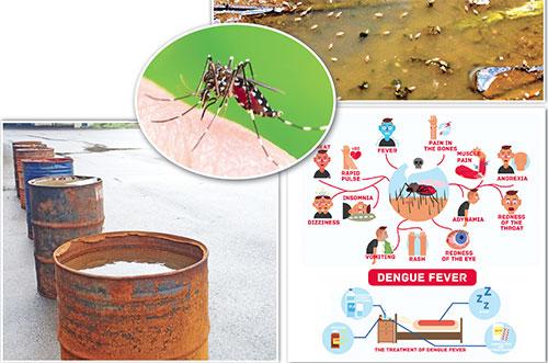 Vector-borne diseases on the  rise in Mormugao